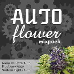 Autoflowering Mix Pack
