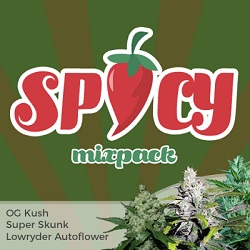 Spicy Mix Pack