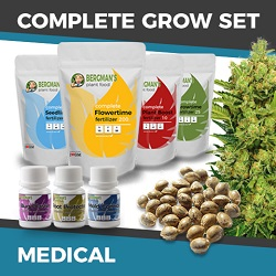 The Complete Medical Cannabis Seeds Grow Set